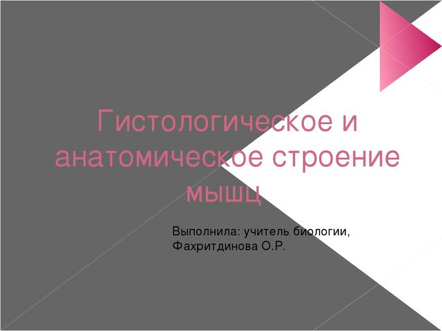Гистологическое и анатомическое строение мышц Выполнила: учитель биологии, Фа...