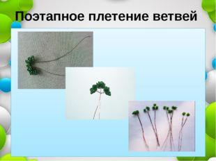 Поэтапное плетение ветвей
