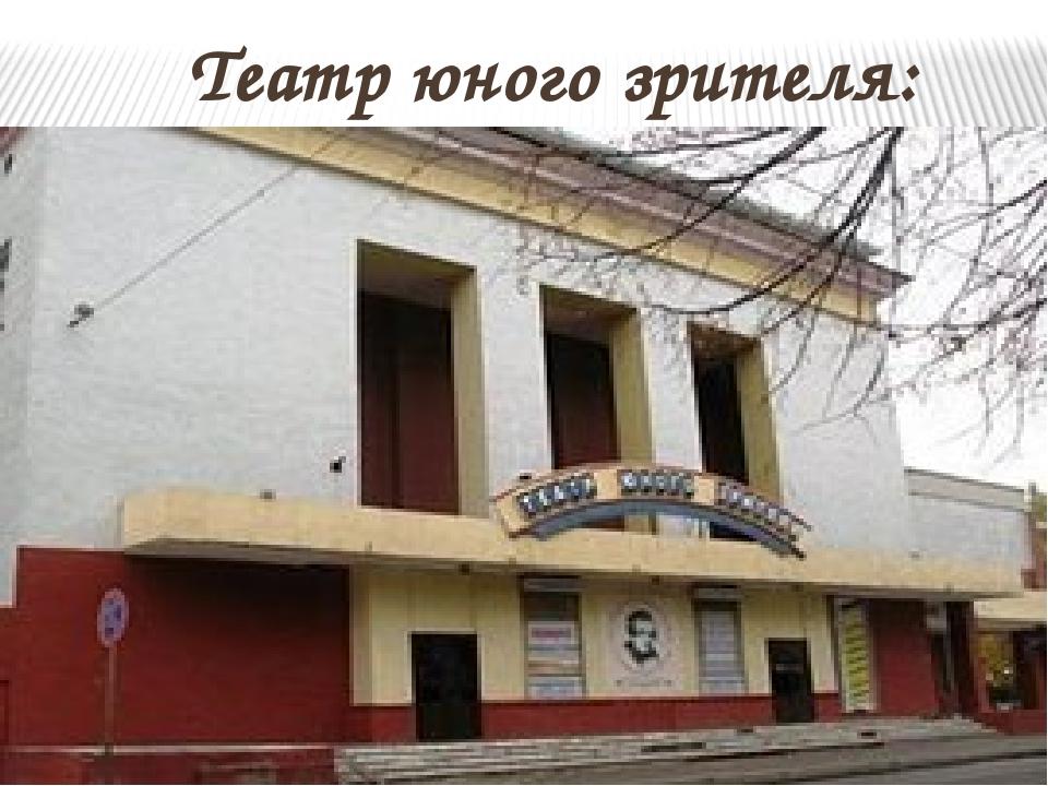 Театр юного зрителя: