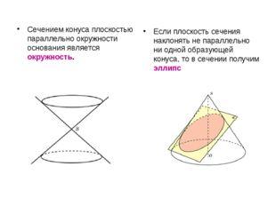 Сечением конуса плоскостью параллельно окружности основания является окружнос