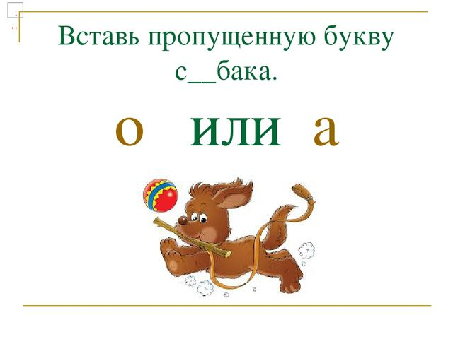 Вставь пропущенную букву с__бака. о или а