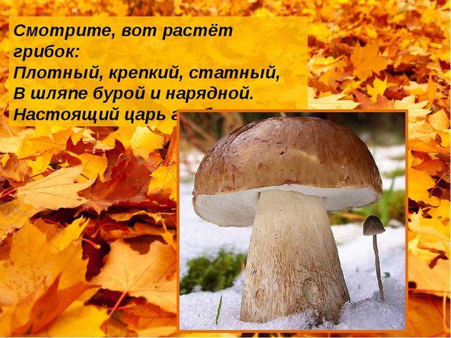Смотрите, вот растёт грибок: Плотный, крепкий, статный, В шляпе бурой и наряд...