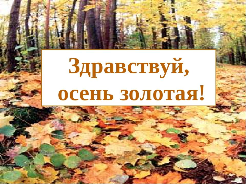 Называем слова на тему «Осень» Слова на тему «Осень» Здравствуй, осень золотая!