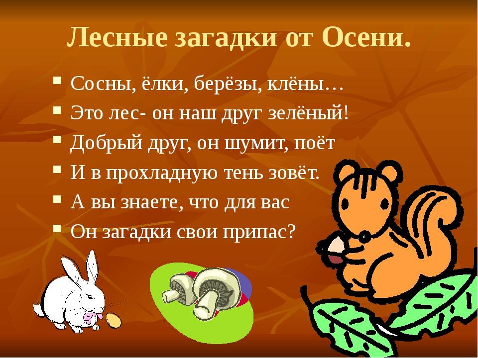 Лесные загадки от Осени. Сосны, ёлки, берёзы, клёны… Это лес- он наш друг зел...