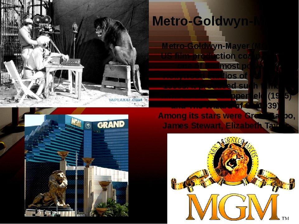 Metro-Goldwyn-Mayer (MGM) is a US film-production company. It is one of the...