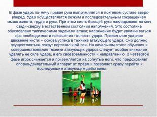 В фазе удара по мячу правая рука выпрямляется в локтевом суставе вверх-впере