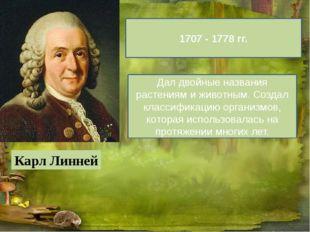 Карл Линней 1707 - 1778 гг. Дал двойные названия растениям и животным. Созда