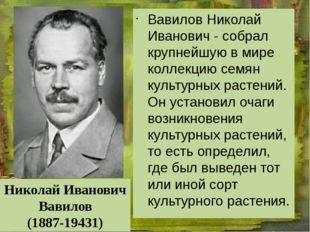 Вавилов Николай Иванович - собрал крупнейшую в мире коллекцию семян культурн