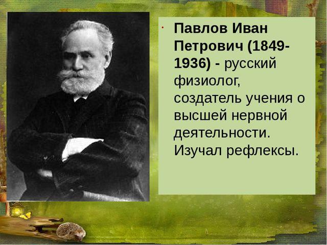 Павлов Иван Петрович (1849-1936) - русский физиолог, создатель учения о высш...