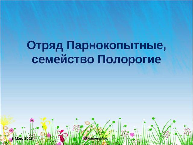 * Яковлева Л.А. Отряд Парнокопытные, семейство Полорогие Яковлева Л.А.