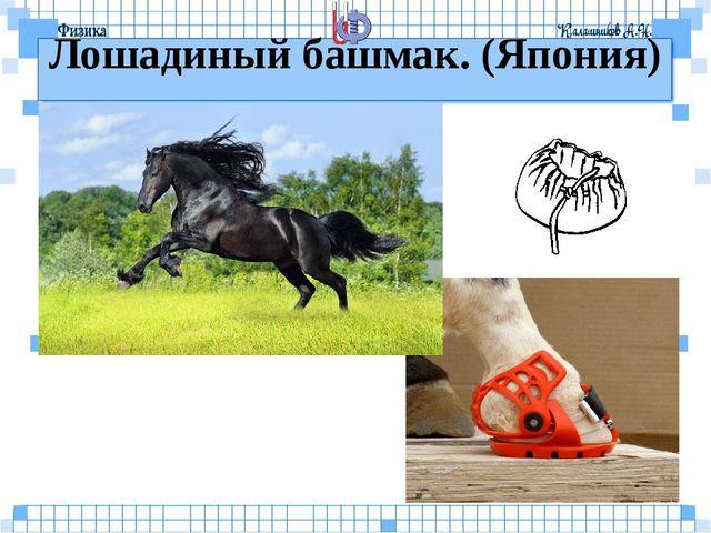 Лошадиный башмак. (Япония)
