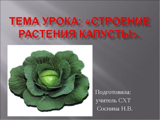 Подготовила: учитель СХТ Соснина Н.В.