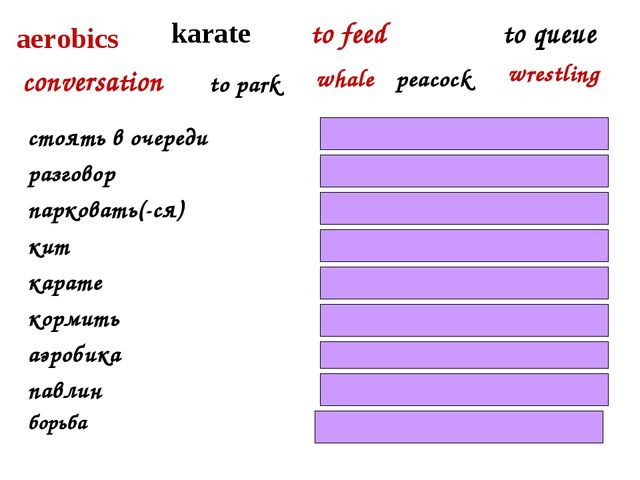 karate to feed conversation aerobics to queue to park whale стоять в очереди...