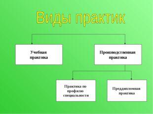 Учебная практика Производственная практика Практика по профилю специальности