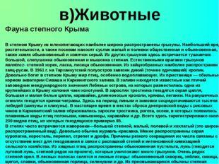 в)Животные Фауна степного Крыма В степном Крыму из млекопитающих наиболее ши