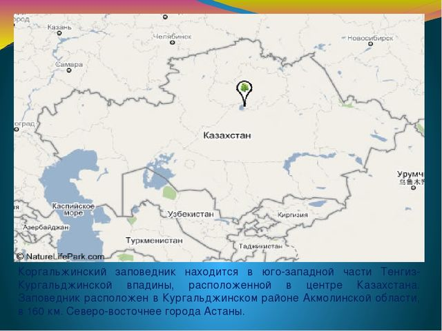 Коргальжинский заповедник находится в юго-западной части Тенгиз-Кургальджинск...