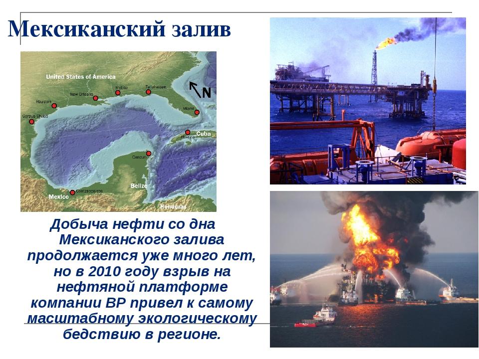 Мексиканский залив Добыча нефти со дна Мексиканского залива продолжается уже...
