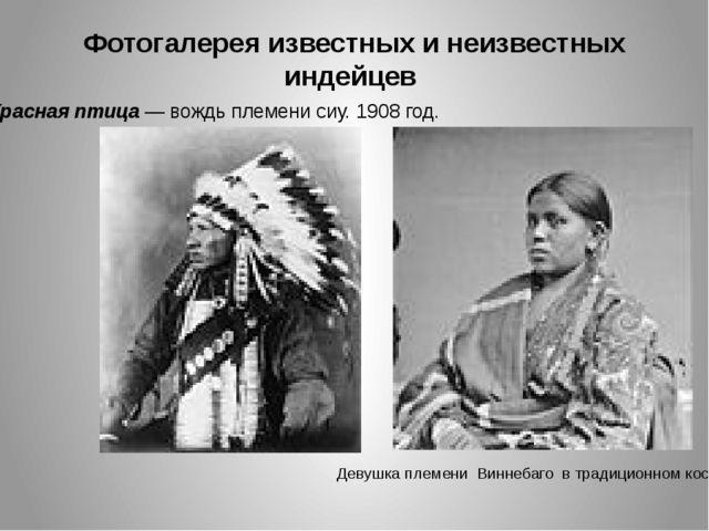 Фотогалерея известных и неизвестных индейцев Красная птица — вождь племени си...