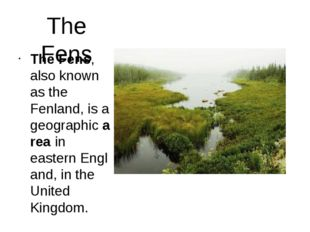 The Fens The Fens, also known as the Fenland, is a geographic area in eastern