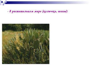 - в растительном мире (колючки, шипы):
