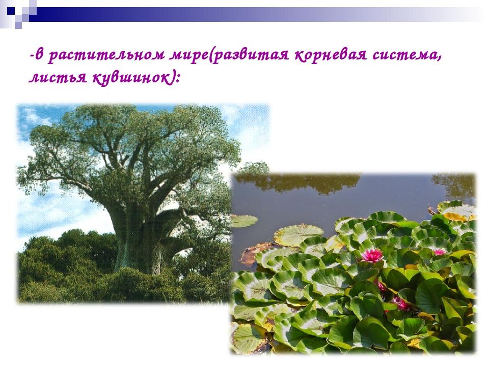 -в растительном мире(развитая корневая система, листья кувшинок):