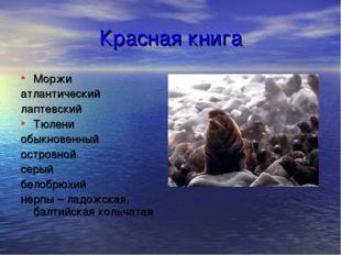 Красная книга Моржи атлантический лаптевский Тюлени обыкновенный островной се
