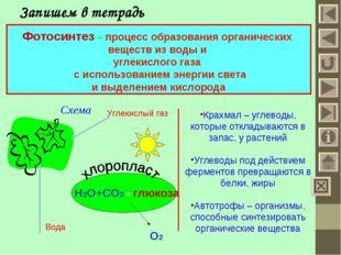 Запишем в тетрадь Фотосинтез – процесс образования органических веществ из во