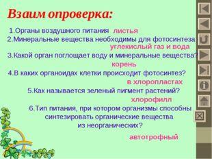 Взаимопроверка: 1.Органы воздушного питания - листья 2.Минеральные вещества н