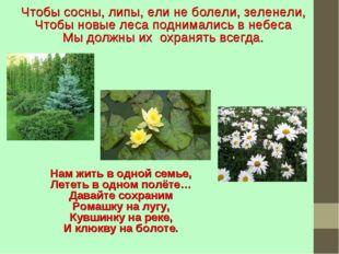 Чтобы сосны, липы, ели не болели, зеленели, Чтобы новые леса поднимались в не