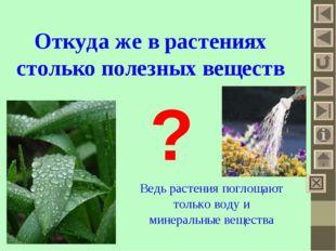 Откуда же в растениях столько полезных веществ ? Ведь растения поглощают тол