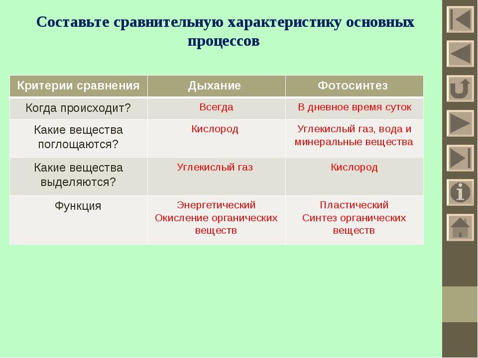Составьте сравнительную характеристику основных процессов