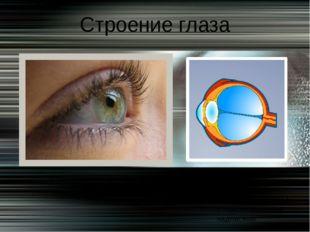 Строение глаза Дома рис. 94 Выполнить в тетради с пояснительными надписями