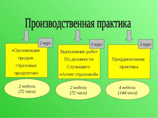 Выполнение работ По должности Служащего «Агент страховой» Преддипломная практ