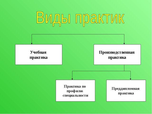 Учебная практика Производственная практика Практика по профилю специальности...