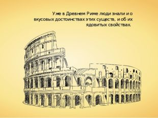 Уже в Древнем Риме люди знали и о вкусовых достоинствах этих существ, и об их