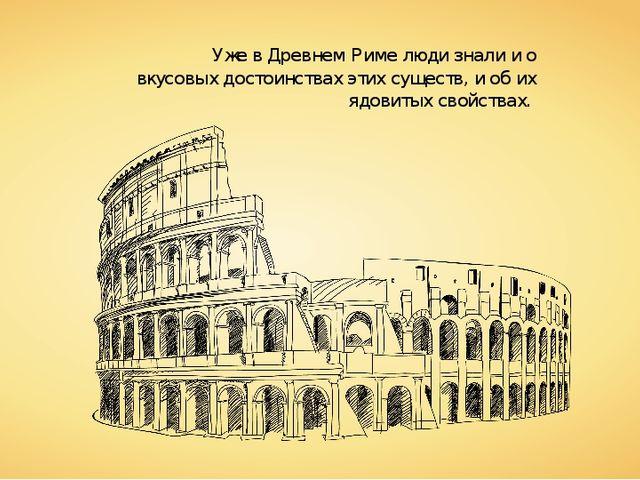 Уже в Древнем Риме люди знали и о вкусовых достоинствах этих существ, и об их...