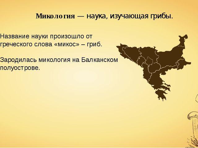 Микология — наука, изучающая грибы. Название науки произошло от греческого сл...