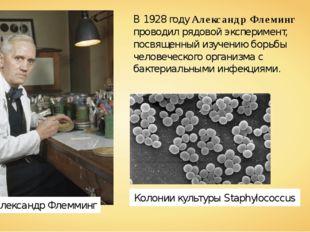 Александр Флемминг В 1928 году Александр Флеминг проводил рядовой эксперимент