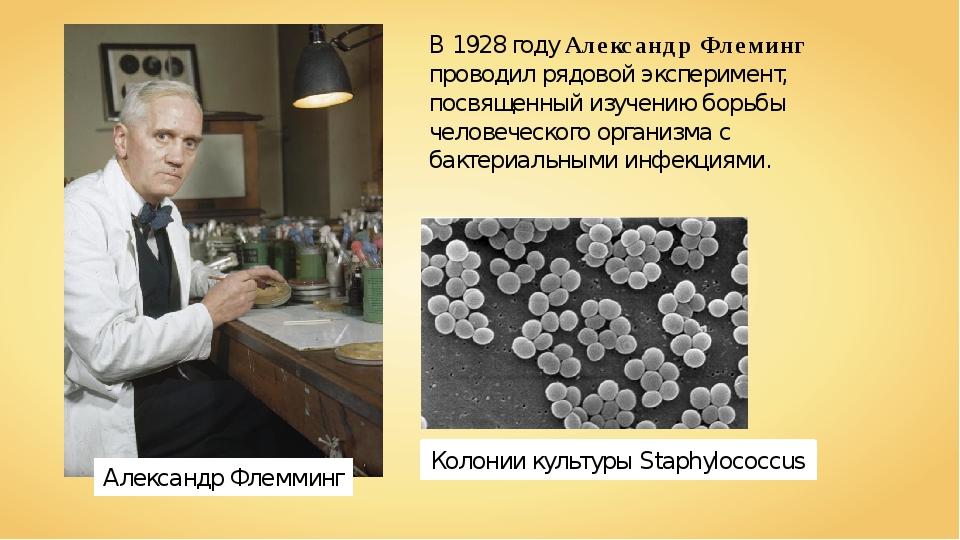 Александр Флемминг В 1928 году Александр Флеминг проводил рядовой эксперимент...