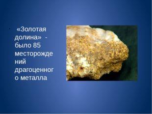 «Золотая долина» - было 85 месторождений драгоценного металла
