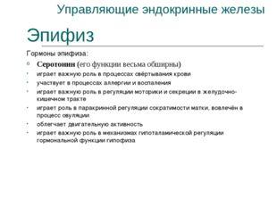 Управляющие эндокринные железы Эпифиз Гормоны эпифиза: Серотонин (его функции
