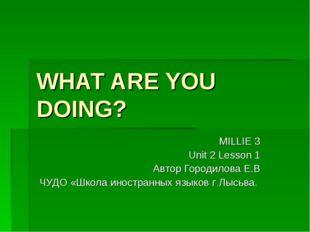 WHAT ARE YOU DOING? MILLIE 3 Unit 2 Lesson 1 Автор Городилова Е.В ЧУДО «Школа