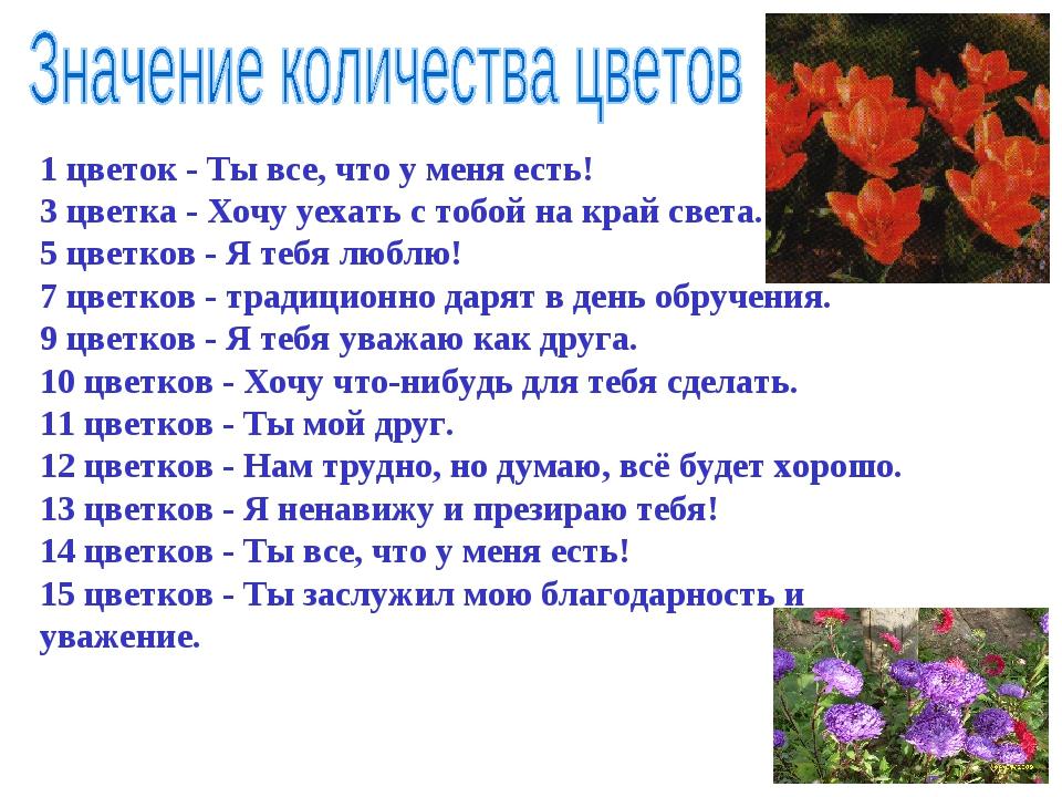 1 цветок - Ты все, что у меня есть! 3 цветка - Хочу уехать с тобой на край св...