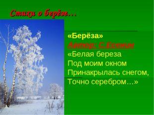 Стихи о берёзе… «Берёза» Автор:С.Есенин «Белая береза Под моим окном Принакр