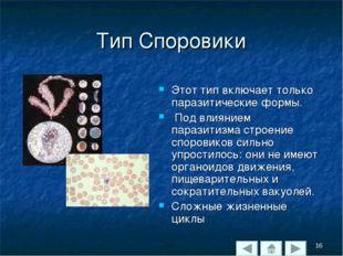Тип Споровики Этот тип включает только паразитические формы. Под влиянием пар