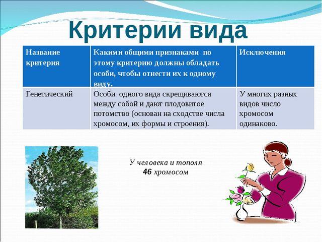 Критерии вида У человека и тополя 46 хромосом Название критерияКакими общими...