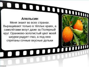 Апельсин Меня знают во всех странах. Выращивают только в тёплых краях, а само