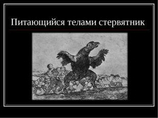 Питающийся телами стервятник
