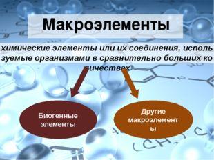 Более того - это соль нашей жизни в прямом и переносном значении данного сло