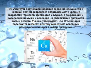 Наряду с натрием обеспечивает работу так называемого калий-натриевого насоса